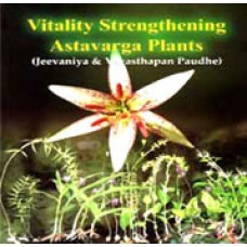 Vitality Astwarga Plants - English