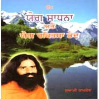 Yog Sadhna Avam Yog Chikitsa Rahasya-Punjabi